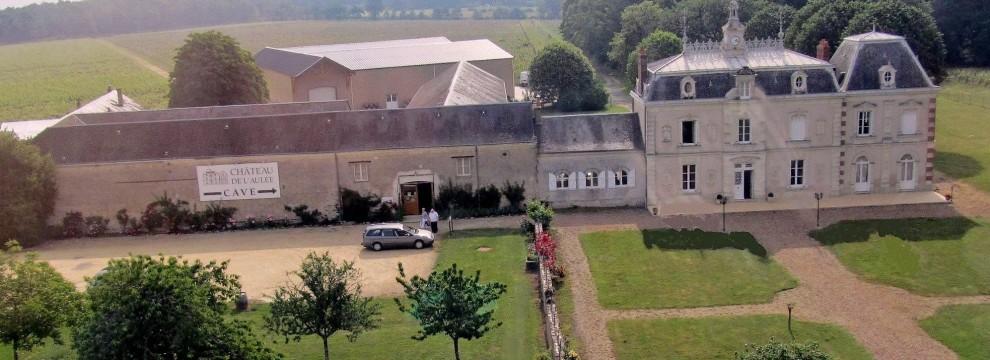 Vue aérienne du Chateau de l